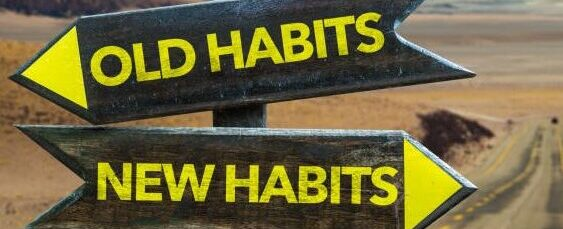 8 Building Blocks for Healthier Habits