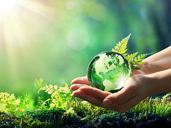 Healthy mind AND environment—can't we have both?